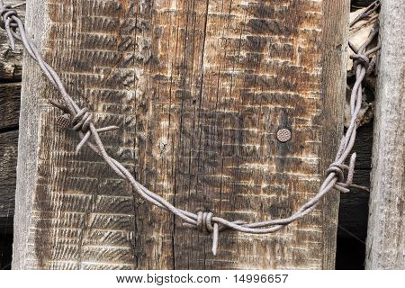 Barbed wire .