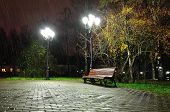 Autumn night landscape of night autumn park. Autumn rainy night with lonely bench under yellowed autumn trees-night autumn landscape. Autumn. Night in autumn city park. Colorful autumn night landscape poster