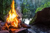 Closeup of burning campfire in forest landscape poster