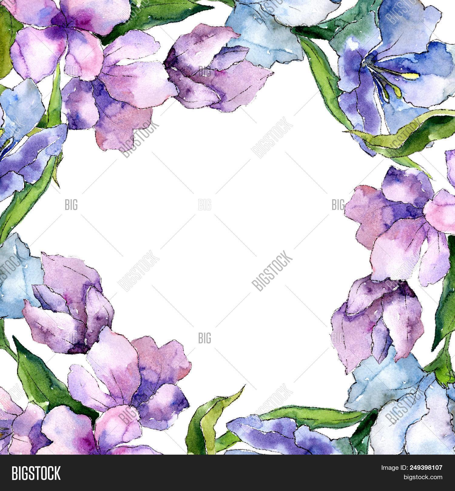 Purple blue image photo free trial bigstock purple and blue alstroemeria flowers floral botanical flower frame border ornament square aquarel izmirmasajfo
