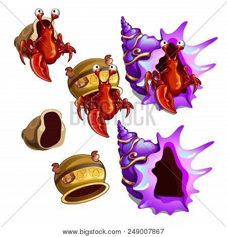 A Set Of Habitats Hermit Crab Isolated On White Background. Old Pottery And Sea Shells. Vector Close