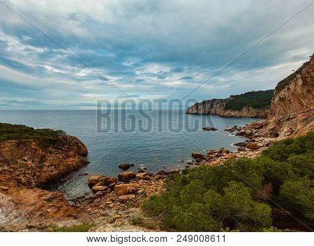 Sea Bay Summer View With Conifer Trees In Front. Costa Brava, Catalonia, Spain.