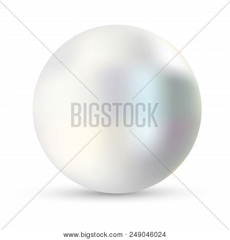 Single Pearl Vector Illustration. Pearl Isolated On White Backgorund With Shadow. 3d Natural Oyster,