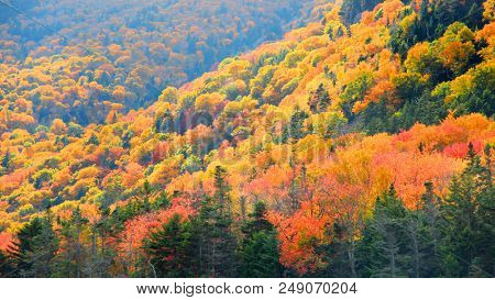 Autumn landscape in White mountain national forest