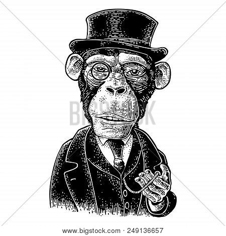 Monkey Gentleman Holding A Watch And Dressed In A Hat, Suit, Waistcoat. Vintage Black Engraving Illu
