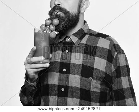 Guy holds homegrown harvest. Farmer pretends to use bunch of cherry tomatoes as straw. Farming and gardening concept. Man with beard drinks tomato juice isolated on white background poster