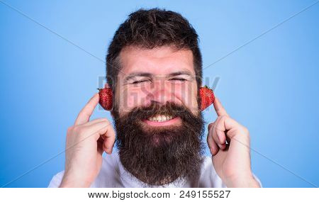 Summer Hit Concept. Man Bearded Hipster Red Ripe Strawberry Ears As Headphones. Hipster Beard Listen