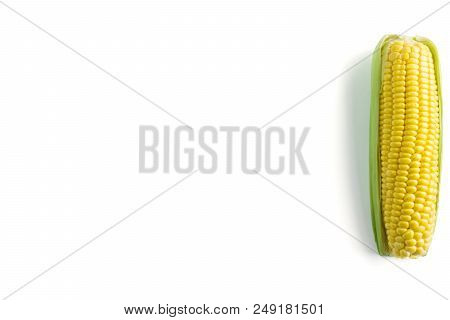 Close-up Of Sweet Corn On A White Background. View From Above To A Raw Sweet Corn. Natural Healthy F