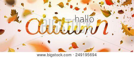 Stock Vector Illustration Hallo Autumn Falling Leaves. Autumnal Foliage Fall And Poplar Leaf Flying