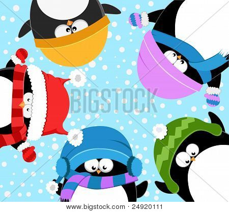 Penguins Celebrating Snow