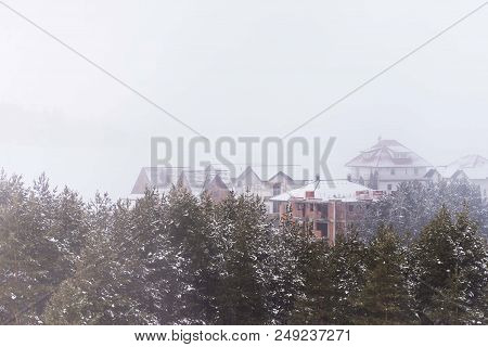Winter Nature Landscape With Conifer Trees And Buildings