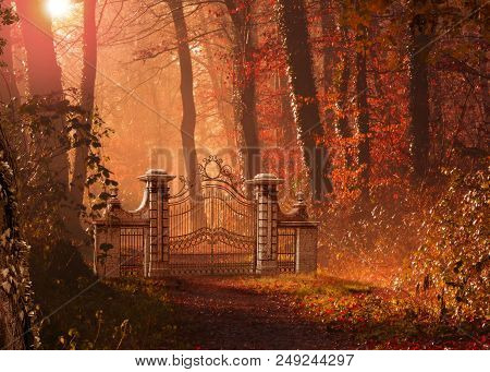 A Gothic Gate Blocking A Foot Path In A Beautiful Autumn Forest. 3d Render Painting