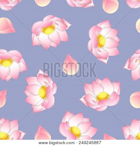 Pink Indian Lotus On Vector Photo Free Trial Bigstock