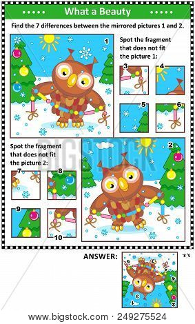 New Year Or Christmas Visual Puzzles With Owl And Garland. Find The Differences Between The Mirrored