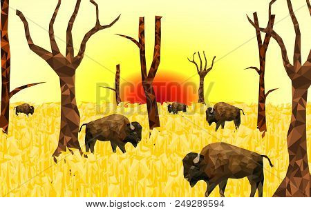 Low Poly Bison On Dry Vector & Photo (Free Trial) | Bigstock