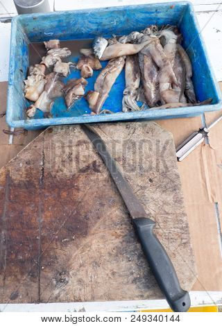 Old Bait Board With Knife And Cut Up Squid For Fishing On A Tourist Charter Boat In Far North, North