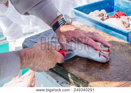 Close Up Of Male Hands Filleting A Snapper Fish On A Fishing Charter Boat In Far North, Northland, N
