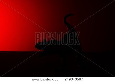 Carnotaurus Shadow With Red Light In Dark