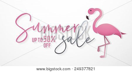Summer Sale Background With Flamingo In Paper Art Style And Calligraphic Text For Commerce, E-commer