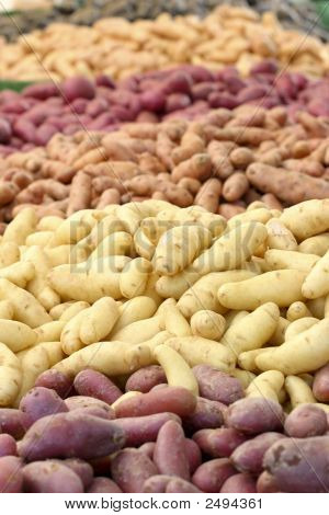 Colorful Potatoes