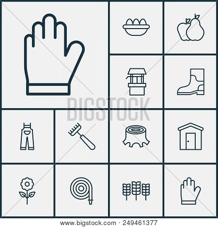 Farm Icons Set With Fruits, Stump, Draw Well And Other Tree Stub Elements. Isolated Vector Illustrat