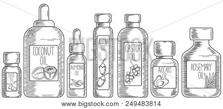 Colelction Of Bottles With Almond, Coconut, Olive, Jojoba, Avocado, Castor, Rosemary Oil For Hair Ca