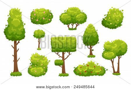 Cartoon Trees And Bushes. Green Plants With Flowers For Vegetation Spring Backyard Landscape Wood Pl
