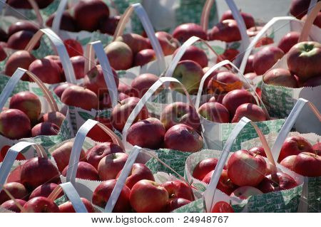 Bags of Apples