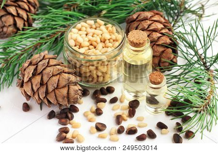 Cedar Nut Oil In Bottles, Pine Cones And Green Boughs, Seeds In Jar And Scattered On Table. Natural