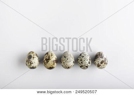 Organic Quail Eggs