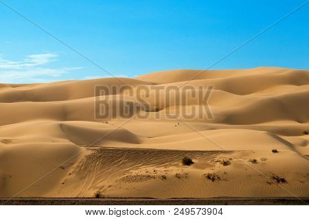 Off Road Vehicle Tracks In The Sand Dunes Just Outside Of Yuma, Arizona.  The Dunes Are Massive, Rol