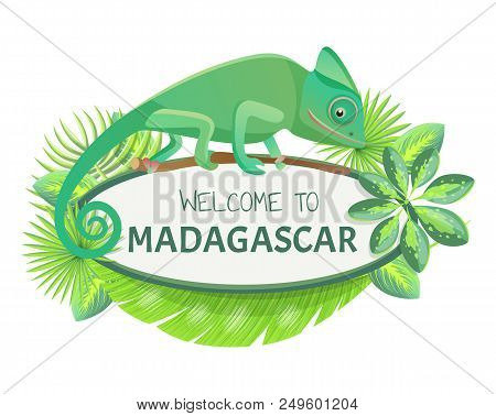 Welcome To Madagascar Banner With Text Sample And Leaves, Lizard And Headline, Welcome To Madagascar