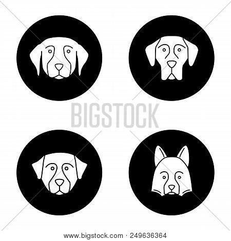 Dogs Breeds Glyph Icons Set. Golden Retriever, Great Dane, Bernese Mountain Dog, Shetland Sheepdog.