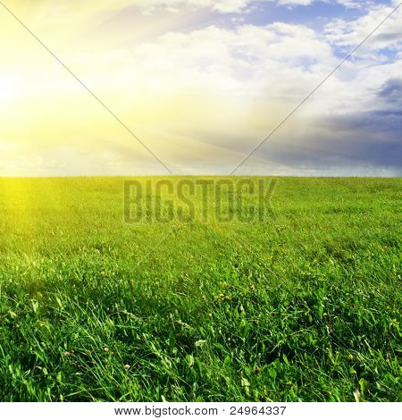 Green field,sky and sun.
