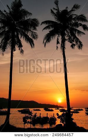 Silhouetted Palm Trees And Boats At Sunrise On Ao Ton Sai, Phi Phi Don Island, Thailand. Koh Phi Phi