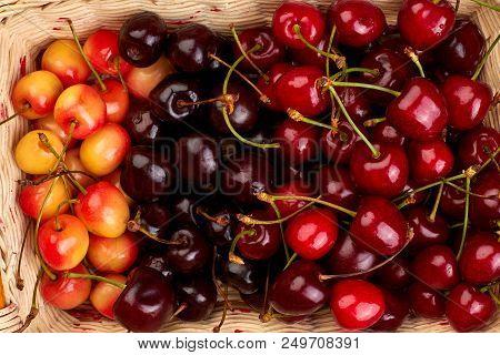 Mix of ripe cherries close up. Ripe juicy seasonal berries. Summer fruity background. poster