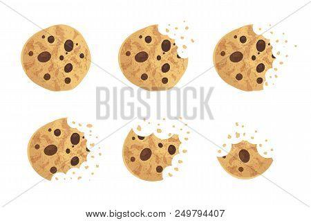 Bitten  Chip Cookie Vector Illustration Set Stock