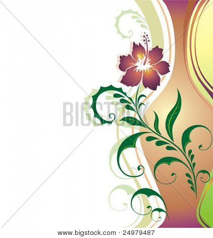 Flower.  Background.