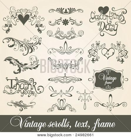 Vintage scrolls, text, frame. Design elements and page decoration.