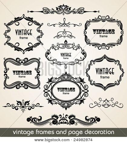 Vintage scrolls and frame. Design elements and page decoration. Set.