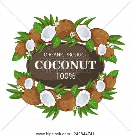 Ripe Coconuts And Palm Leaves Around The Circle Icon With A Fresh 100 Percent Natural Text Farm. The