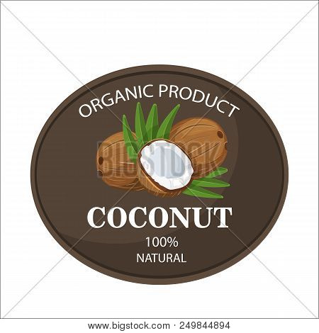 Ripe Coconuts And Leaves With Farm Text Label. The Concept Of The Logo, Tag, Banner, Advertising, Pr