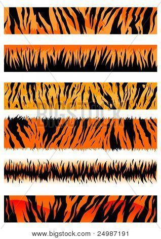 Tiger skin patterns