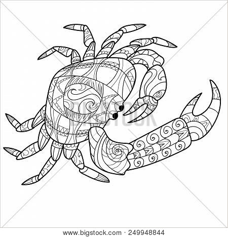 Crab Pattern, Coloring Book, Page, Animal, Pattern. Vector Illustration