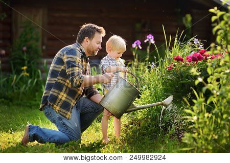 Middle Age Man And His Little Son Watering Flowers In The Garden At Summer Sunny Day. Gardening Acti