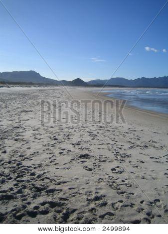 Great Barrier Island 049