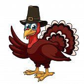 A cartoon thanksgiving turkey in a pilgrim hat on white background poster
