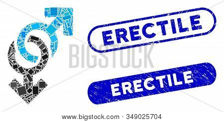 Mosaic Gay Symbol And Distressed Stamp Seals With Erectile Phrase. Mosaic Vector Gay Symbol Is Compo