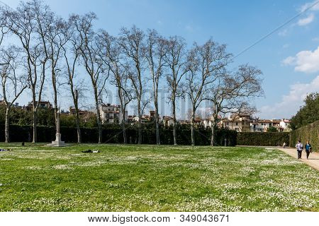 Florence, Italy - 26, March, 2016: Horizontal Picture Of Beautiful Garden With Daisy Flowers At Bobo