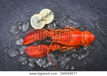 Fresh Lobster Food On A Black Plate Background / Red Lobster Dinner Seafood With Herb Spices Lemon R